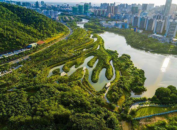 三亚红树林生态公园解析