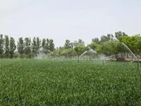 农田水利与生态系统发展研究