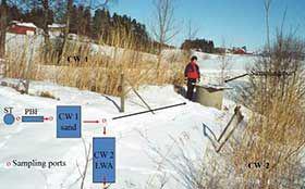 人工湿地在处理分散污水中的应用