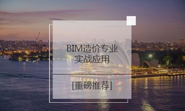 BIM造价专业实战应用 【网课+答疑+考前直播辅导+中级证书】
