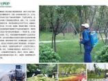最全的园林景观绿化养护技术手册