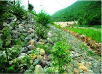 石笼护坡@中建石笼护坡网的制作方法