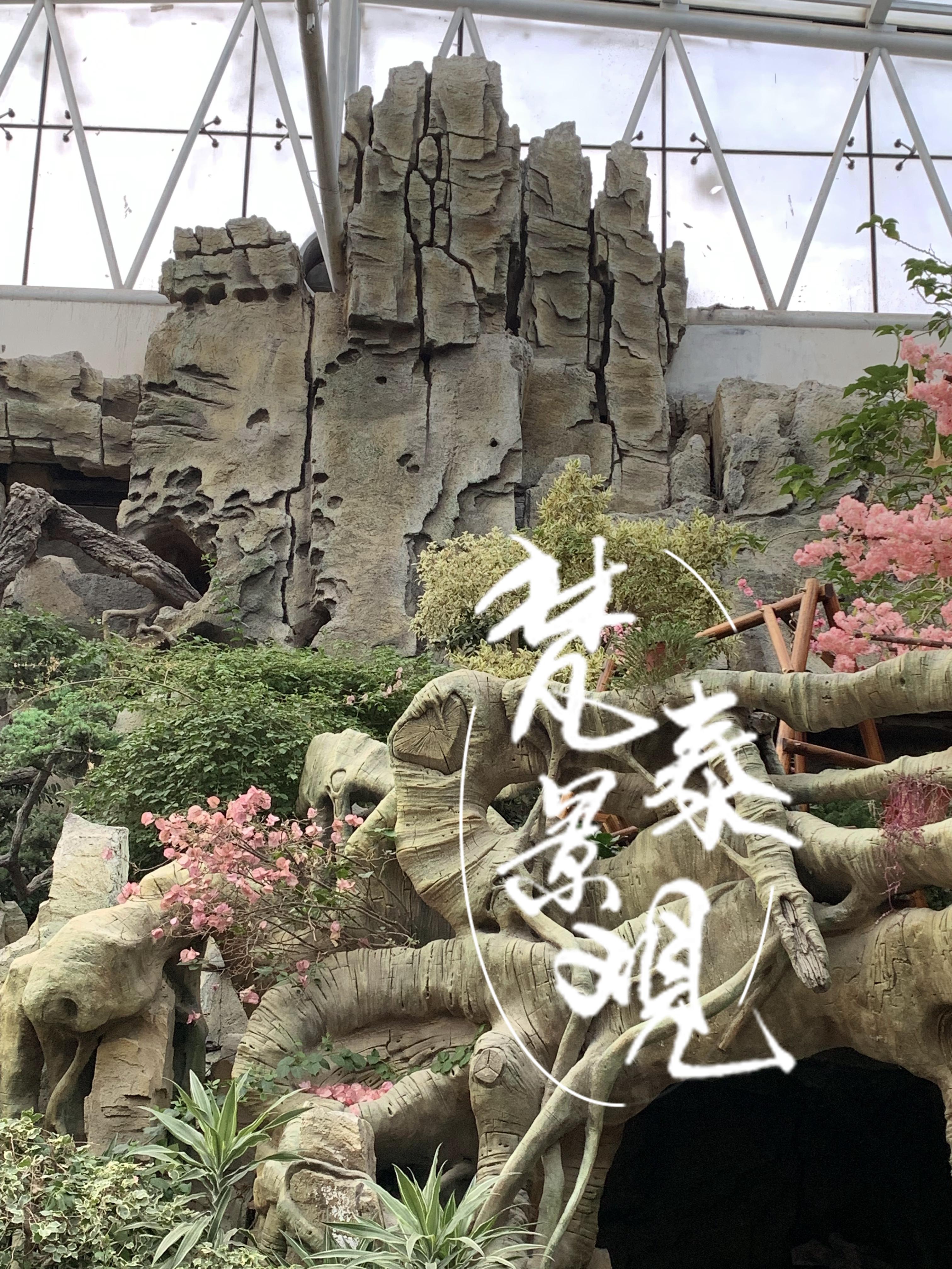 园林景观实景图片3