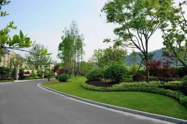 园林绿化养护图片2