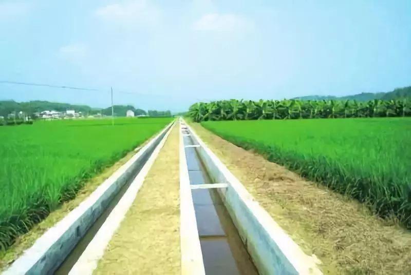 农田土整图片2