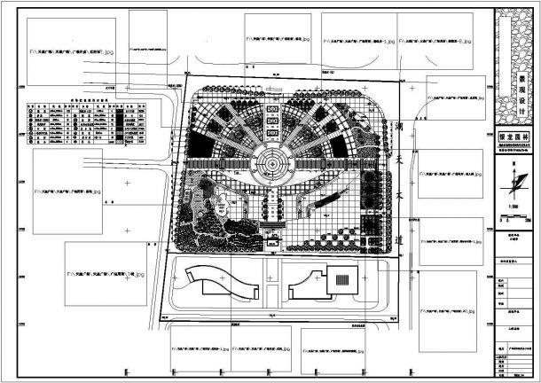 湖南银龙园林广场植物配置总平面图-图一
