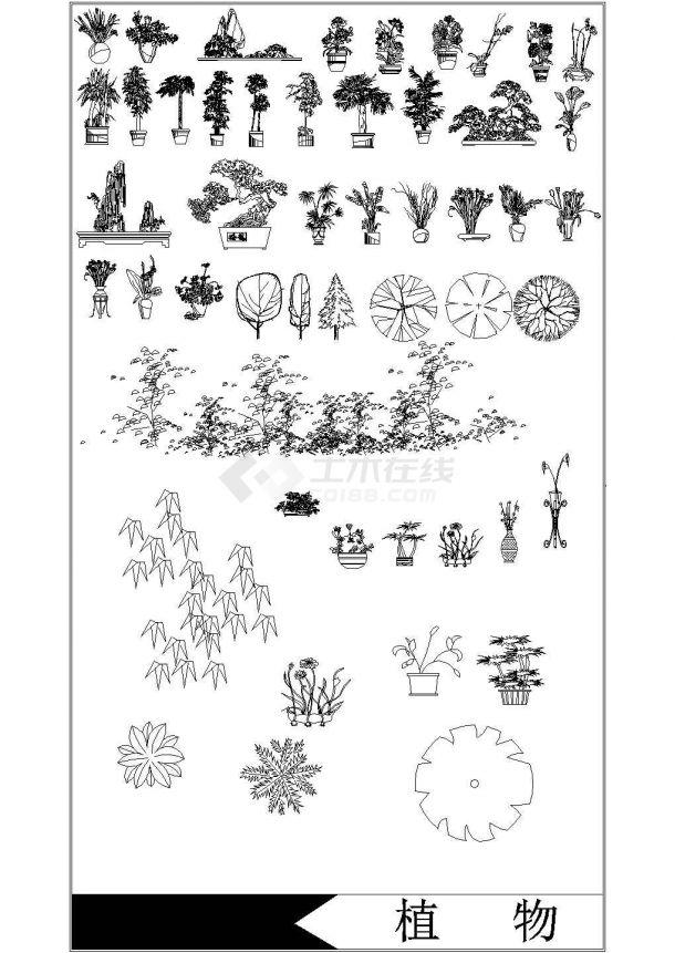 绿化植物大全 CAD景观大样图Cad设计图-图一