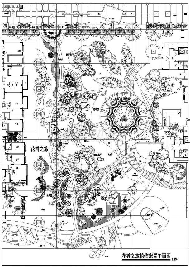 某地方花香之旅植物配置平面设计cad图纸-图一