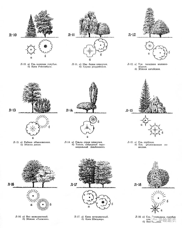 园林景观素材图片2