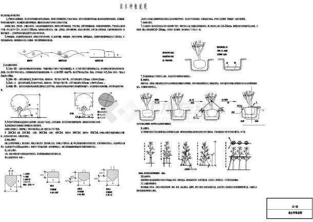 村庄综合整治工程(入口景观设计)--绿化-图二