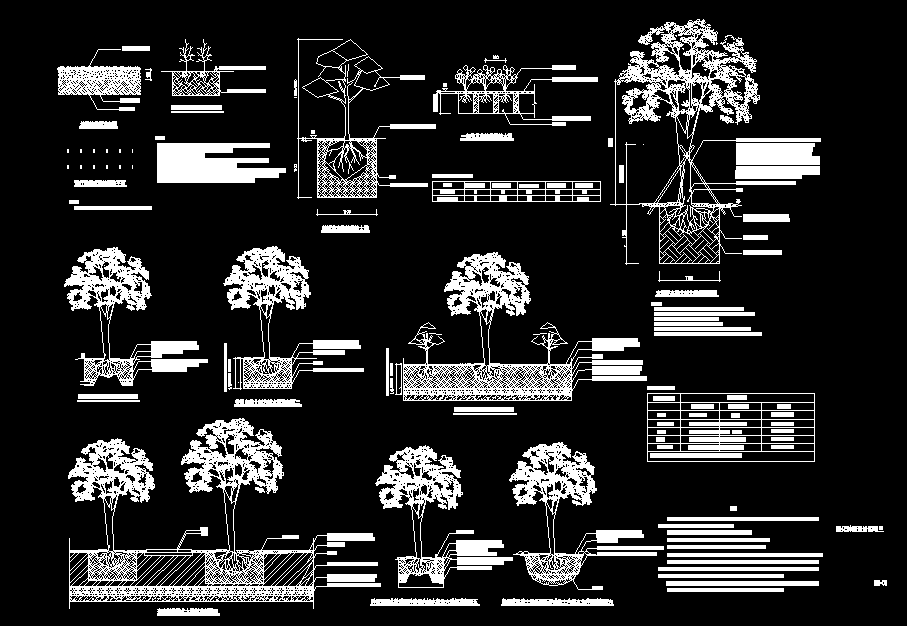 园林施工图图片2
