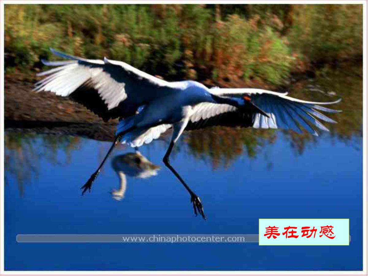 苏州园林5图片1