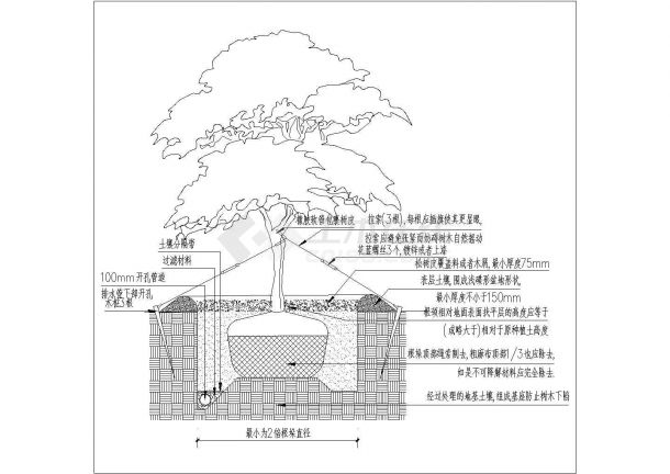 西充县某学校景观植物配置施工图纸-图二