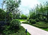 园林施工图图片1