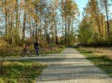 生态园林图片1